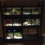"""3'x2'x18"""" Double Door Model with removable divider and led lighting"""